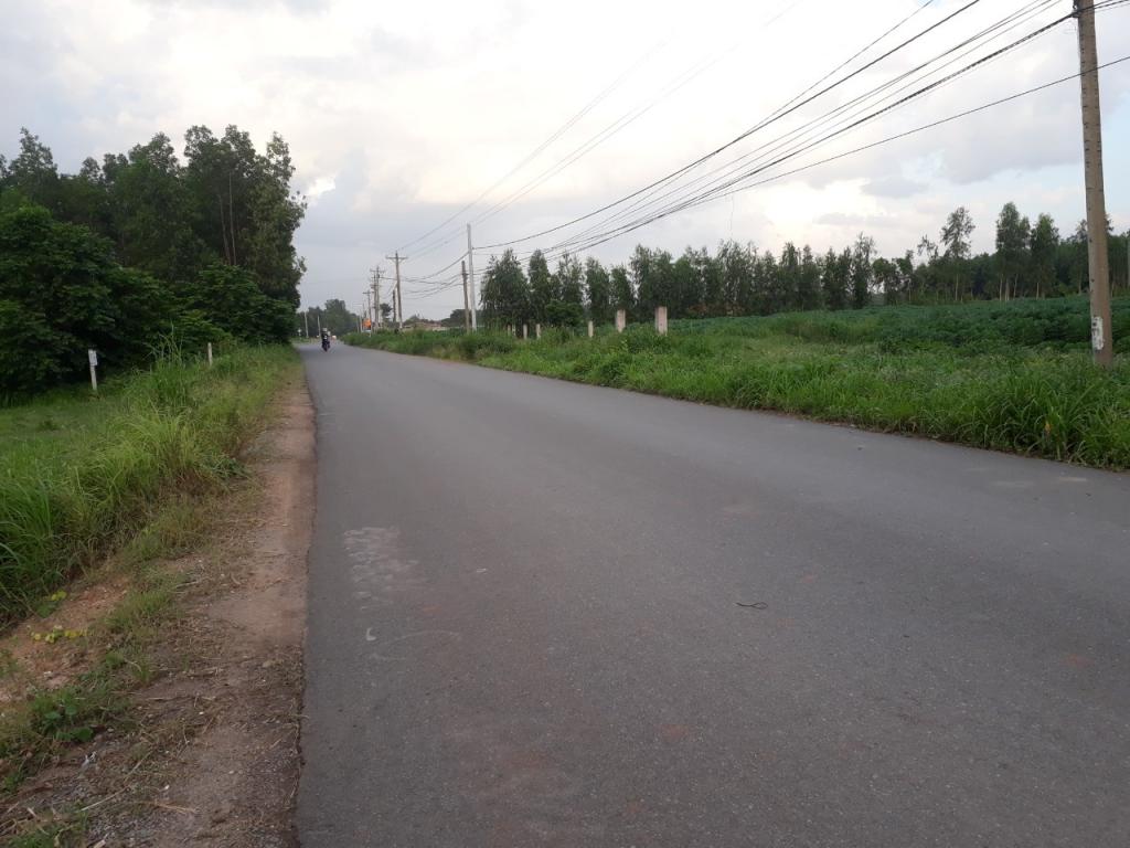 Đường giao thông và đường nội bộ rộng, phương tiện đi lại dễ dàng và thuận lợi
